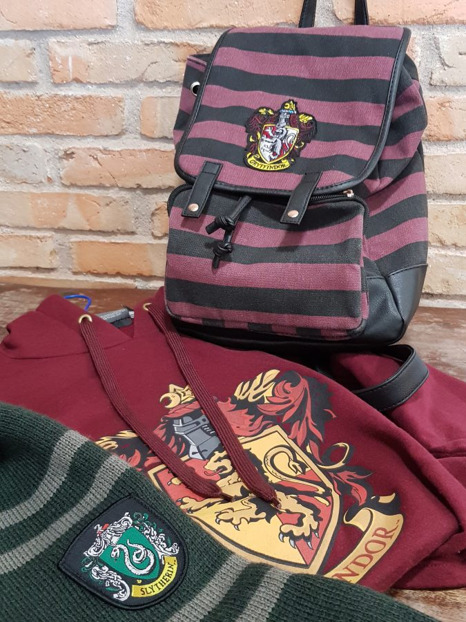 fiesta Harry Potter