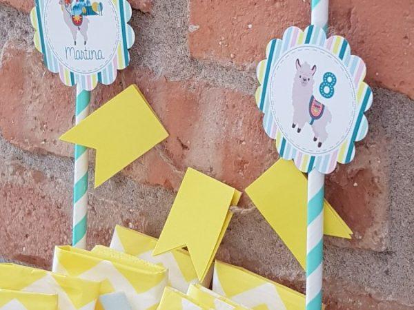 Kit fiesta Llama