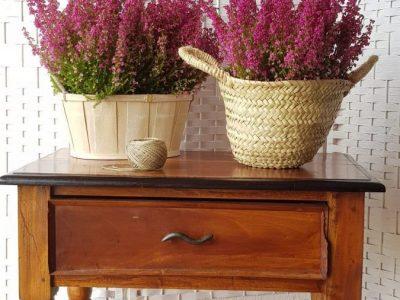 Ideas para decorar con brezo