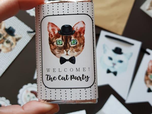 Kit fiesta gatos